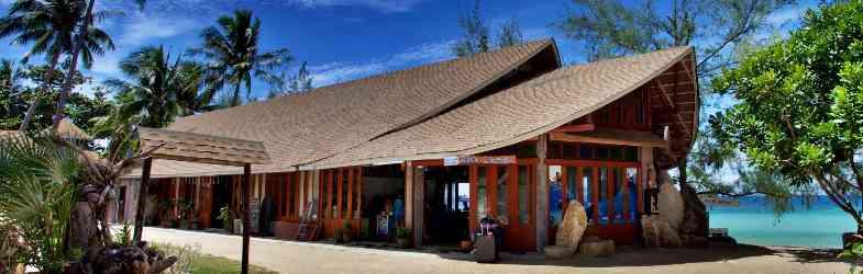 Tauchen in Ko Tao