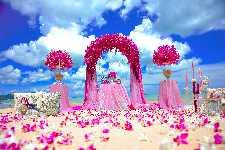 ILVES TOUR WEDDING