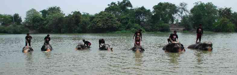 Aktivitäten in Ayutthaya